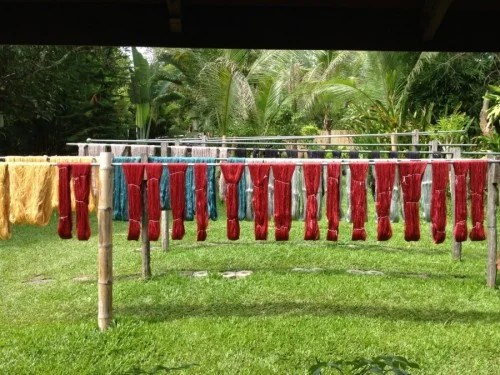 Fabrics being dyed at Ock Pop Tok.