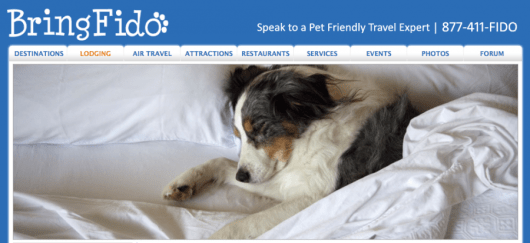BringFido.com is a great site you can use to find pet friendly hotels.