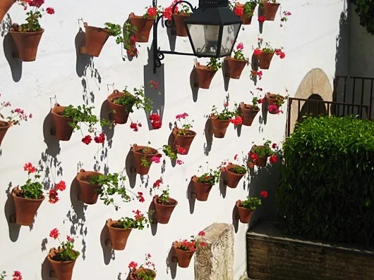 Cordoba's patios are stunning in spring