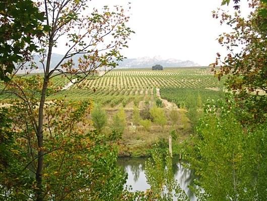 La Rioja is beautiful at any time of year. Photo by Lori Zaino.