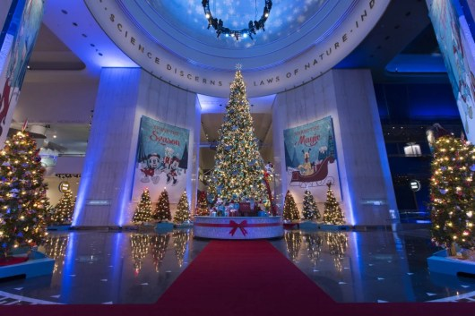 The 45-foot-tall Grand Tree at Chicago's Museum of Science and Industry is magnificent. Photo credit: J.B. Spector
