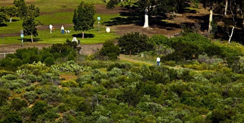 San Diego's Morley Field Trails Gateway