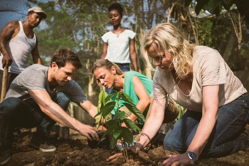 Cruises will work alongside people in global communities in need, with activities such as planting cacao plants.