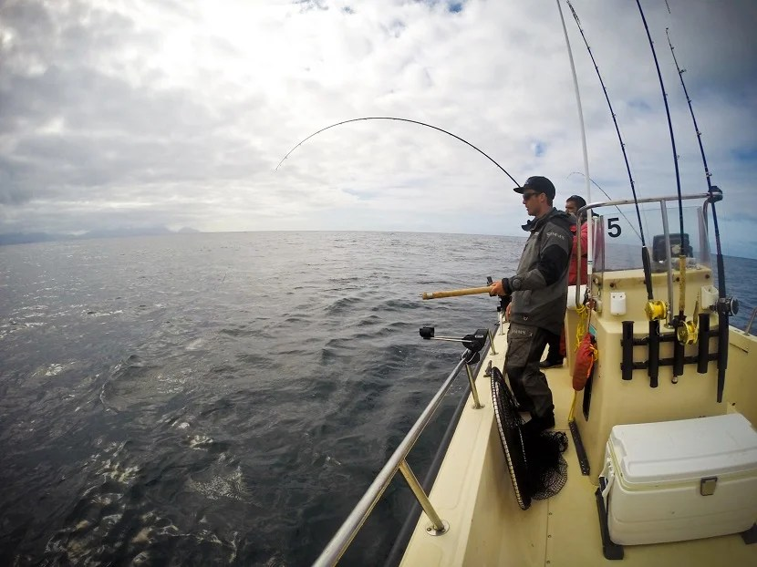 A view from the waters off the coast of British Columbia. The WCFC provides guides, gear, and tackle.  All you need to do is reel the fish in.