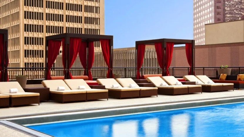 Kick back on the rooftop pool at the Sheraton Dallas. Photo courtesy of the hotel.