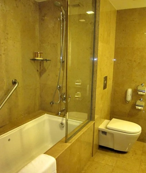 The shower and toilet