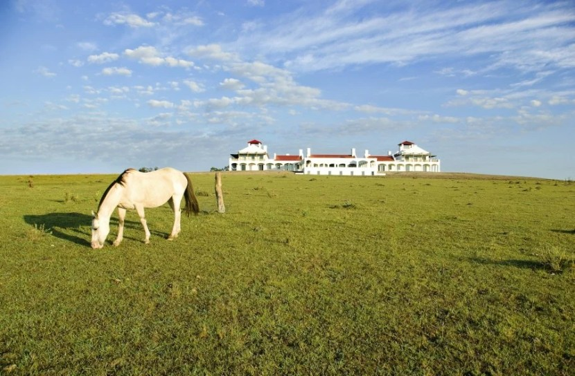 Get out on the pampas like a gaucho at Estancia Vik. Photo courtesy of Estancia Vik.