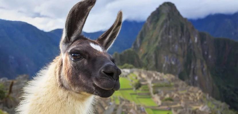 Peru featured