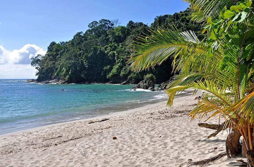 Playa Manuel Antonio feels like a private beach, granted you arrive early before the crowds.