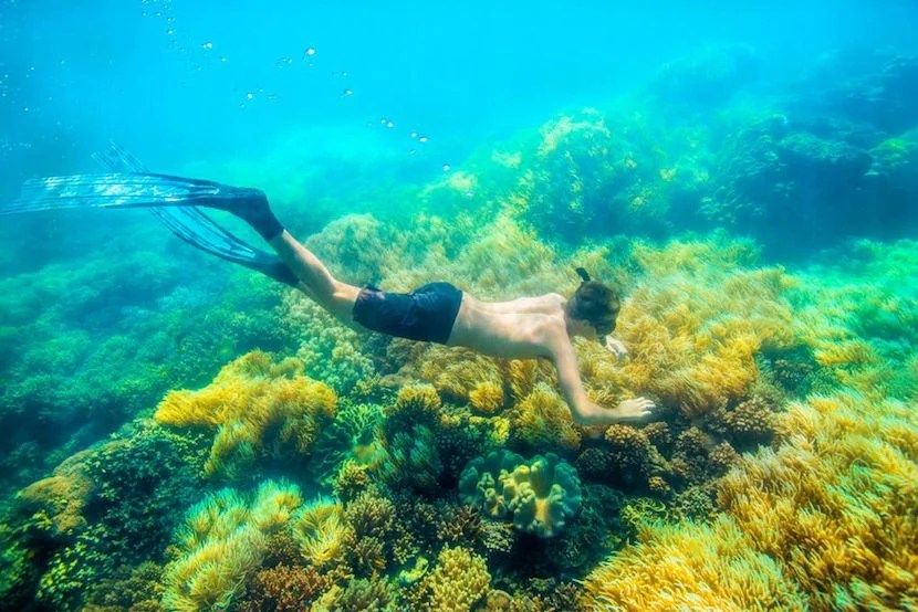 Who's ready to explore the Great Barrier Reef? Image courtesy of Airbnb.