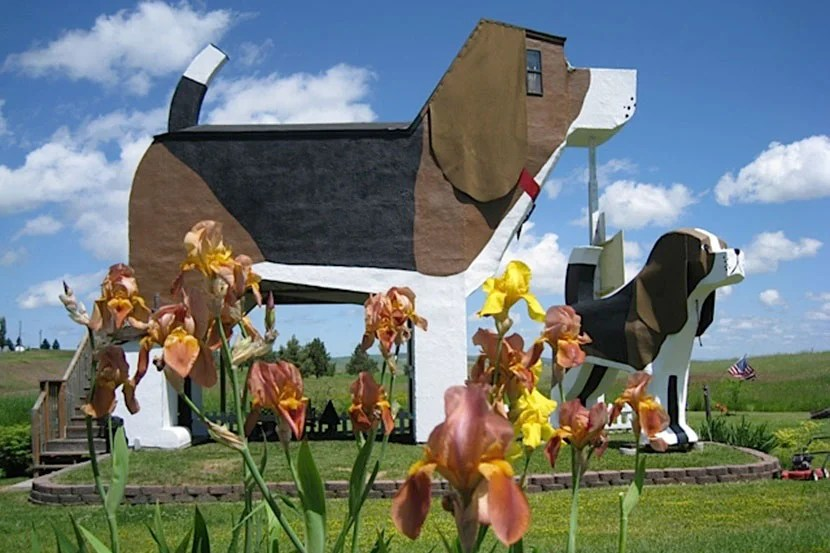 This giant dog structure is actually a legit B&B.