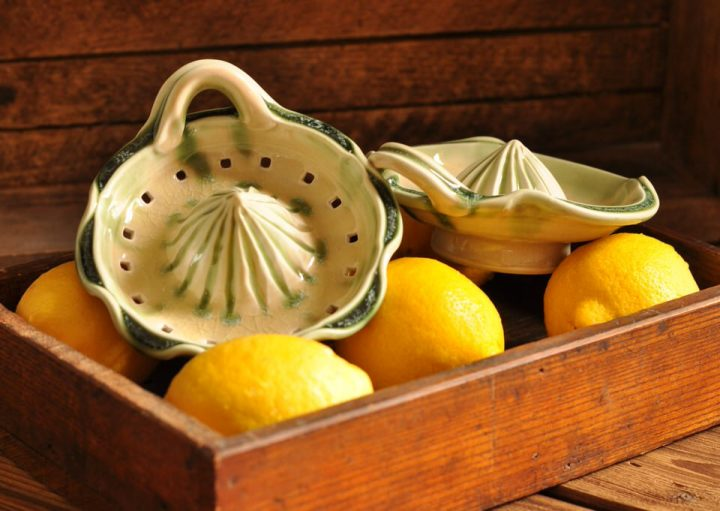 Lucy Fagella citrus juicers