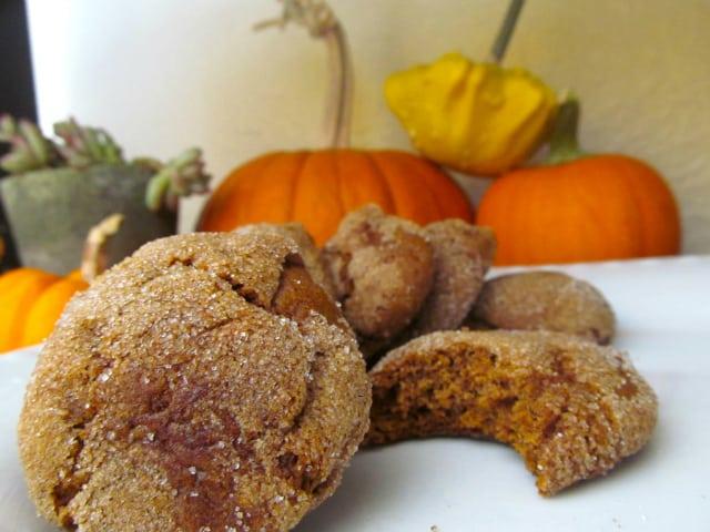 pumpkin molasses cookie recipe