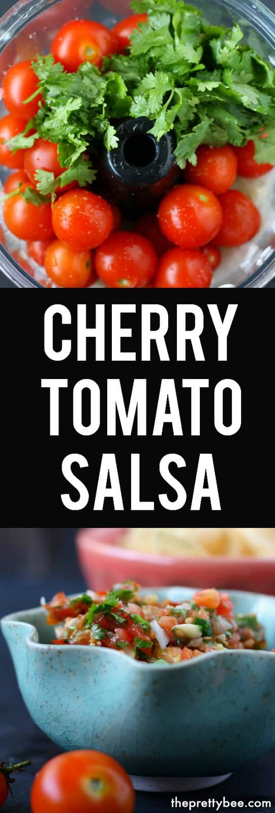Plush Canning This Easy Cherry Tomato Salsa Is Way To Use Up Your Easy Cherry Tomato Bee Roasted Cherry Tomato Salsa Cherry Tomato Salsa nice food Cherry Tomato Salsa