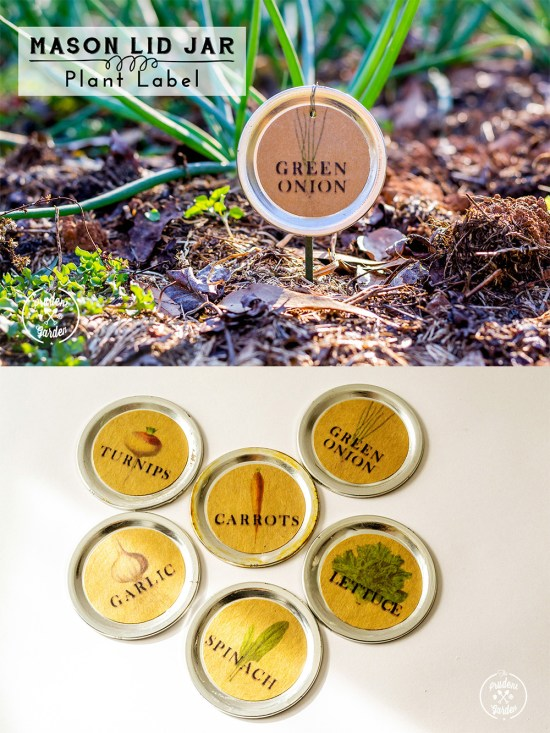 Mason Jar Lid Plant Label