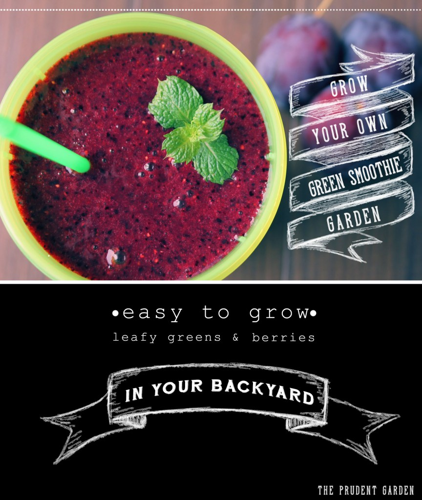 Grow Your Own Green Smoothie Garden