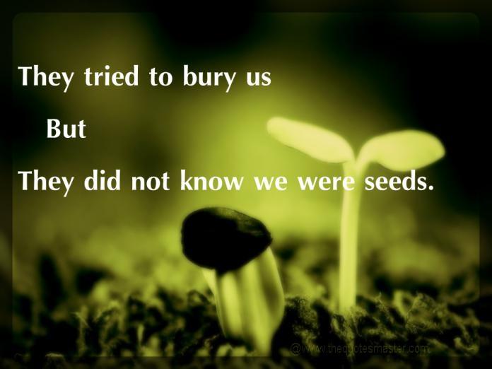 They Tried To Bury Us