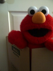 Elmo was not happy about being packed.