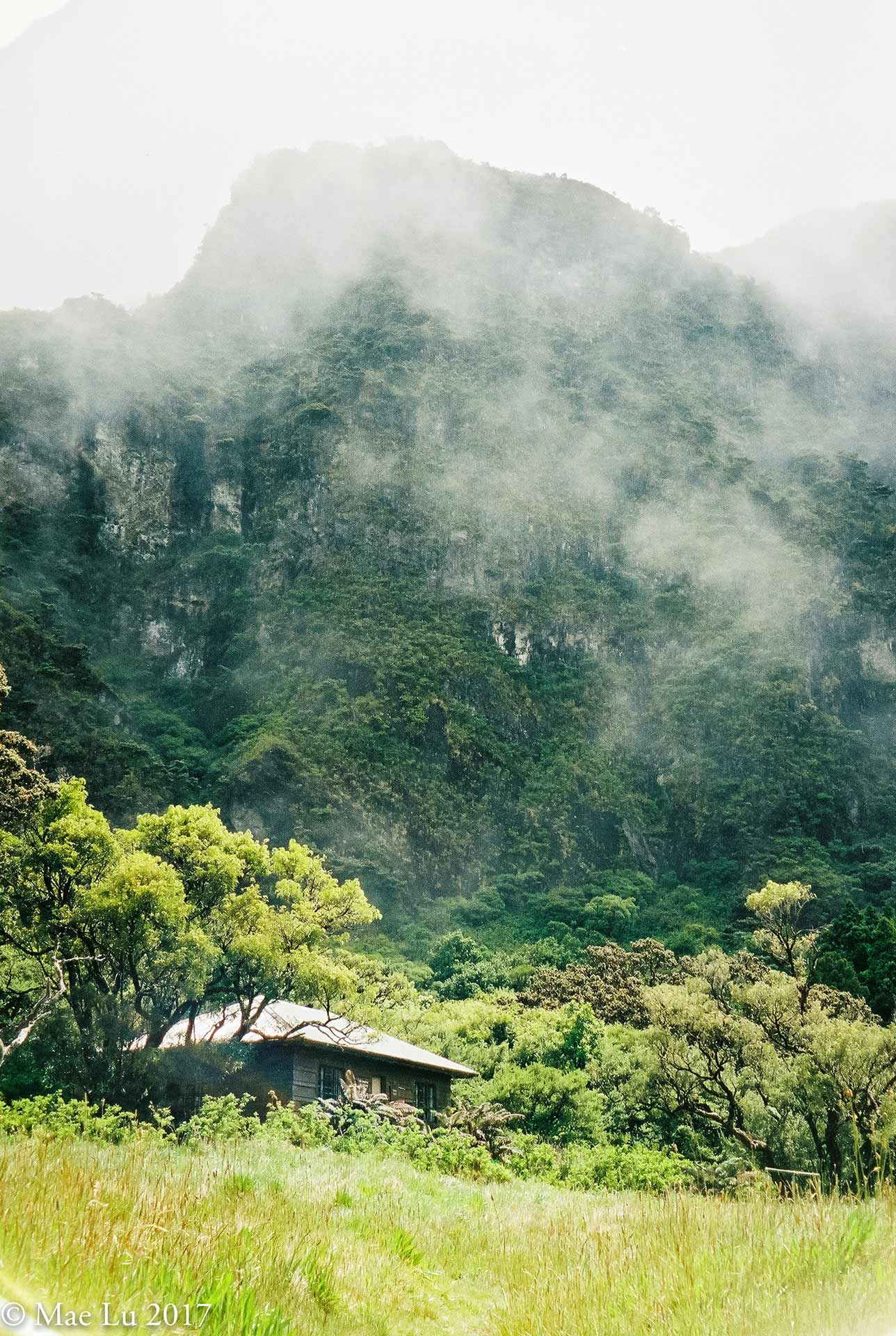thereafterish film is not dead haleakala paliku cabin at base of lush jungle cliff