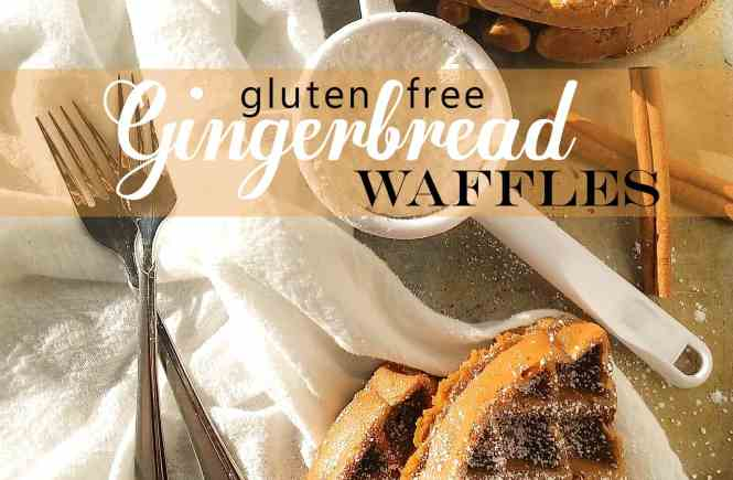 The warm flavors of molasses, snappy ginger, and earthy cinnamon come together in these caramel colored and oh-so-fluffy waffles. Gluten free, too!