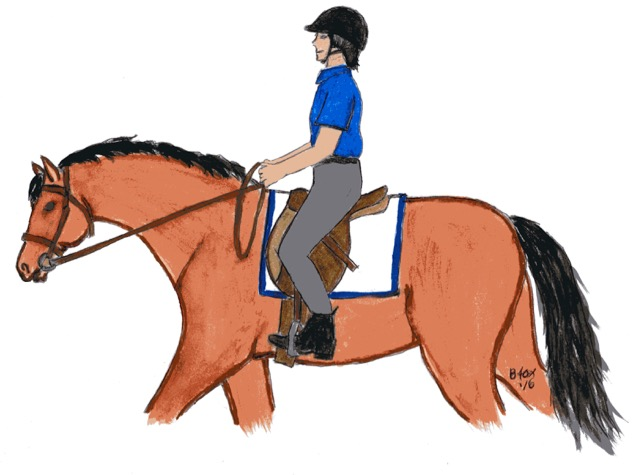 Rider Hand Position – Good and Bad