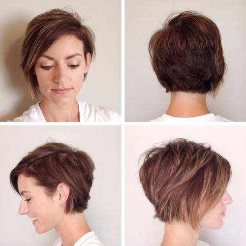 pixie bob with highlights