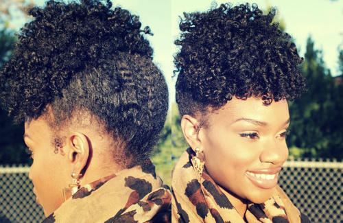 Terrific 50 Updo Hairstyles For Black Women Ranging From Elegant To Eccentric Short Hairstyles For Black Women Fulllsitofus