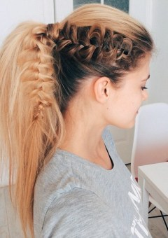 high voluminous ponytail hairstyle with a braid