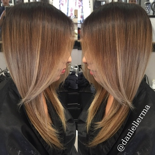 brown blonde hair with ombre highlights