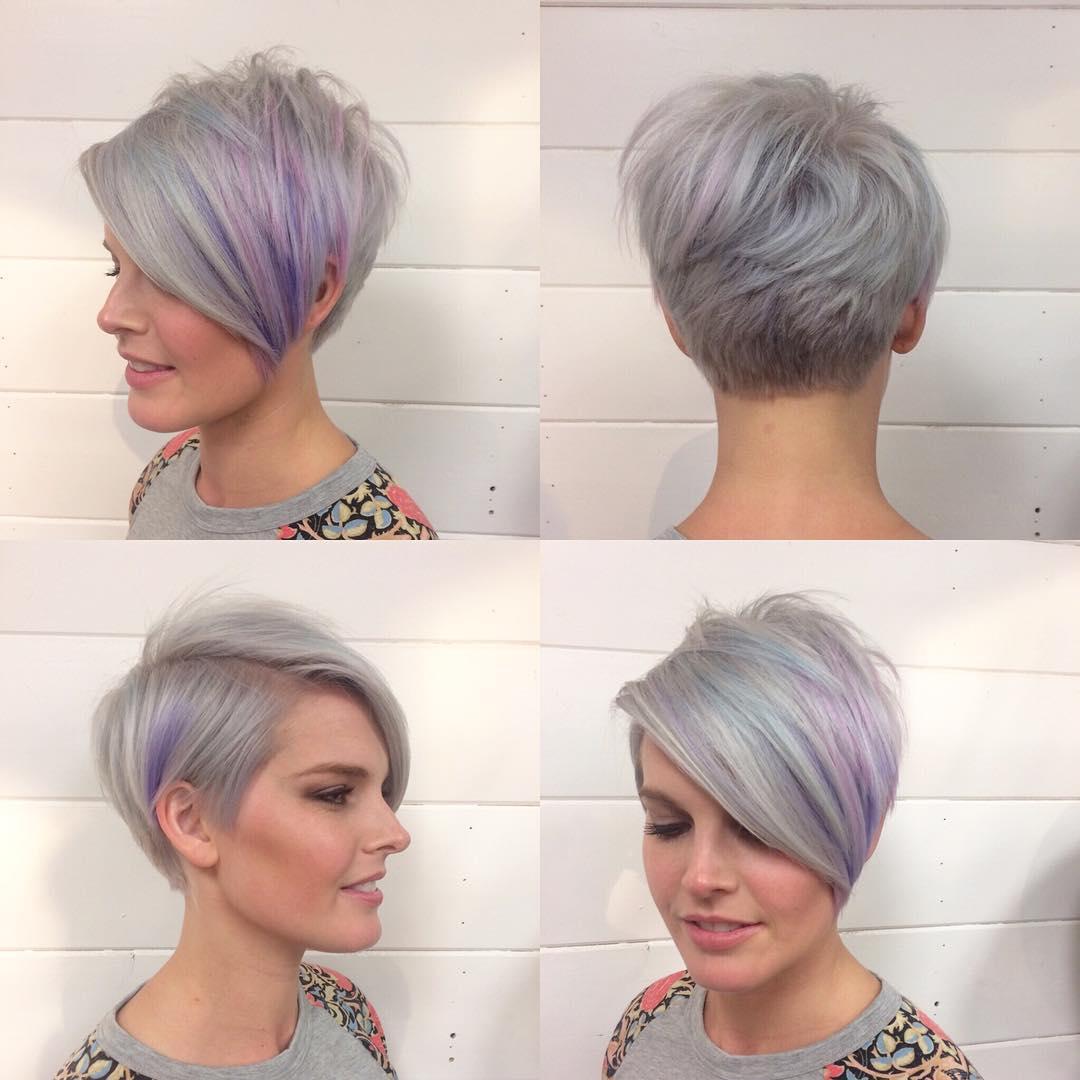 Lavender Pixie Bob