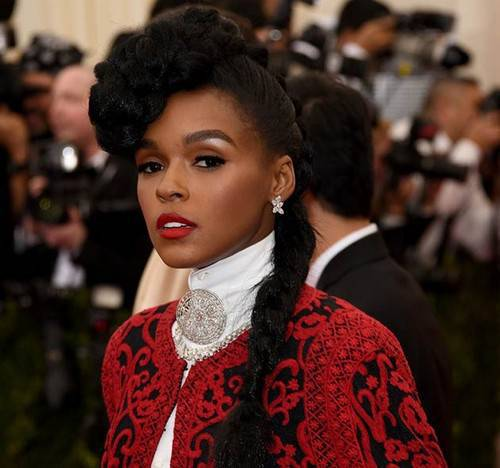 Janelle Monae black braided hairstyle