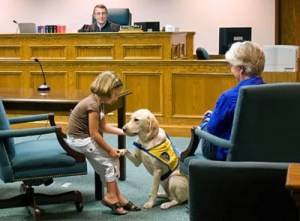 "A ""courthouse dog"" brings comfort to a child getting ready to testify."