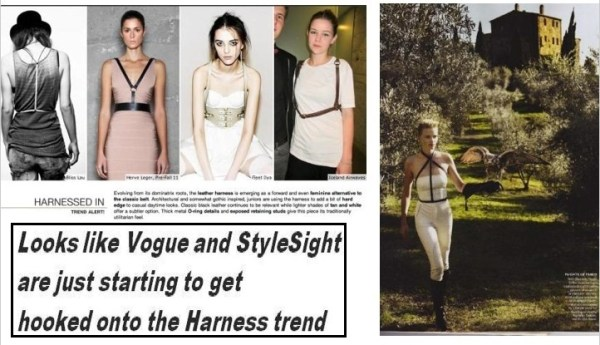 harness WE SAW IT FIRST!   TREND VALIDATIONS   The Sche Report / Margaret Sche