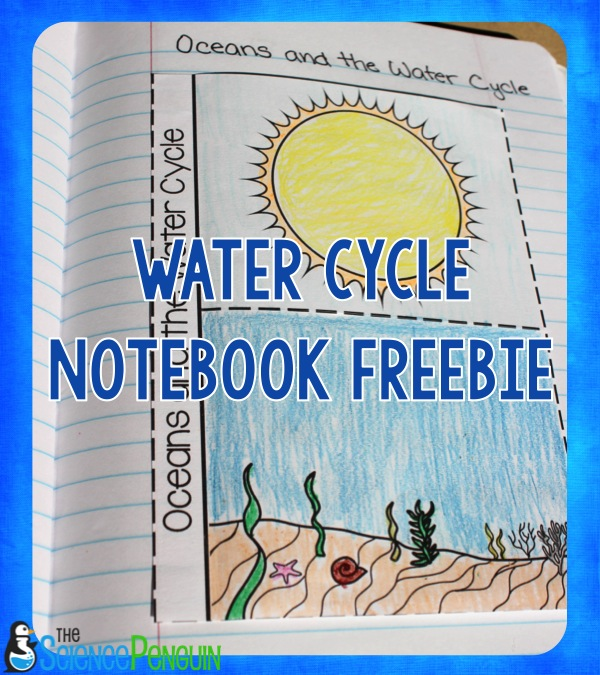 7 Ideas for Teaching the Water Cycle