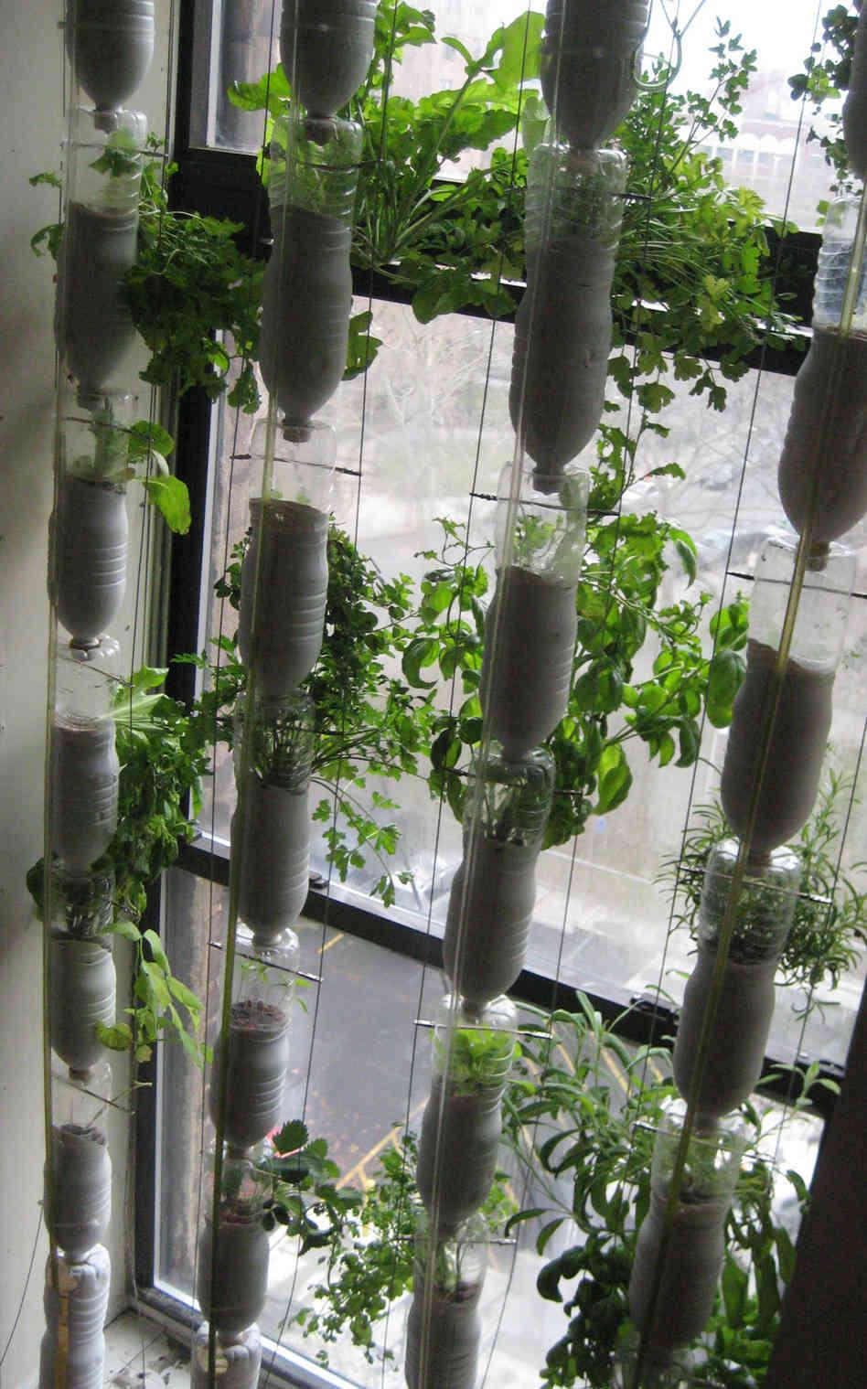 Fullsize Of Homemade Indoor Garden