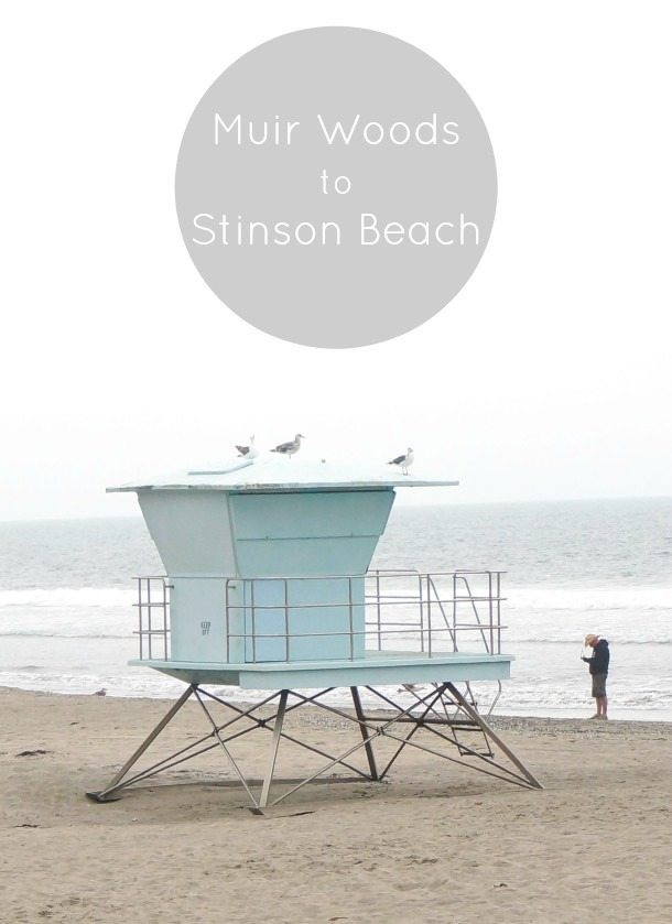 Muir Woods to Stinson  feature