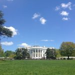 Washington D.C. | Guest Post