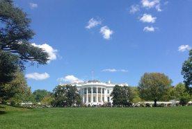 Washington D.C. | Guest Post