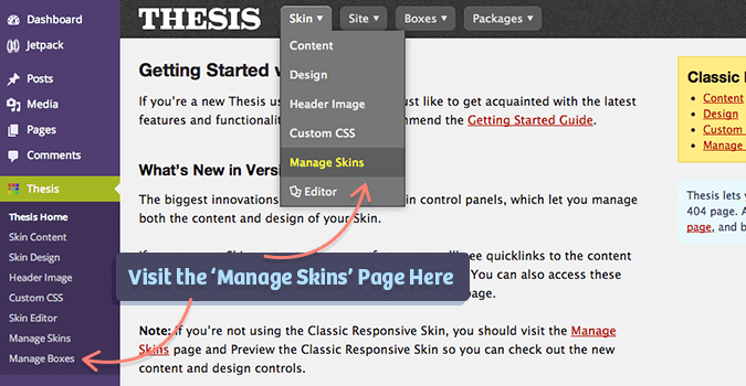Manage Skins WordPress Section