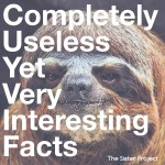 Completely Useless Yet Very Interesting Facts
