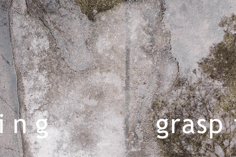 grasphead