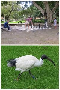 Sydney, Australia: Hyde Park