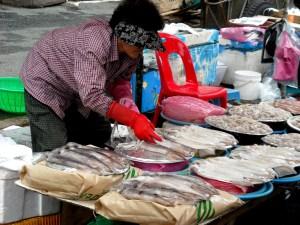 Jagalchi Fish Market 2010