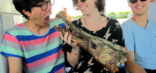 New Orleans, Louisiana: Swamp Tour, Hallie & Jae-oo