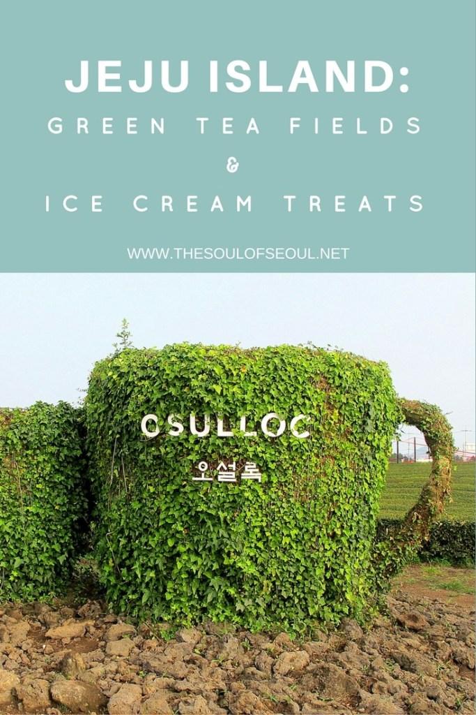 Jeju Island: O'Sulloc Green Tea Field