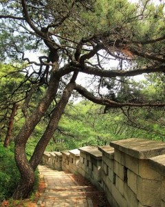 Seoul, Korea: The Seoul Fortress Wall