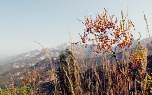 Bukhansan, Seoul: Autumn Hiking