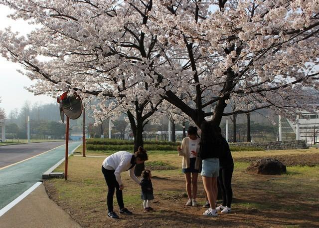 Pyeonghwa Park, Mapo-gu, Seoul, Korea, baby and Hallie