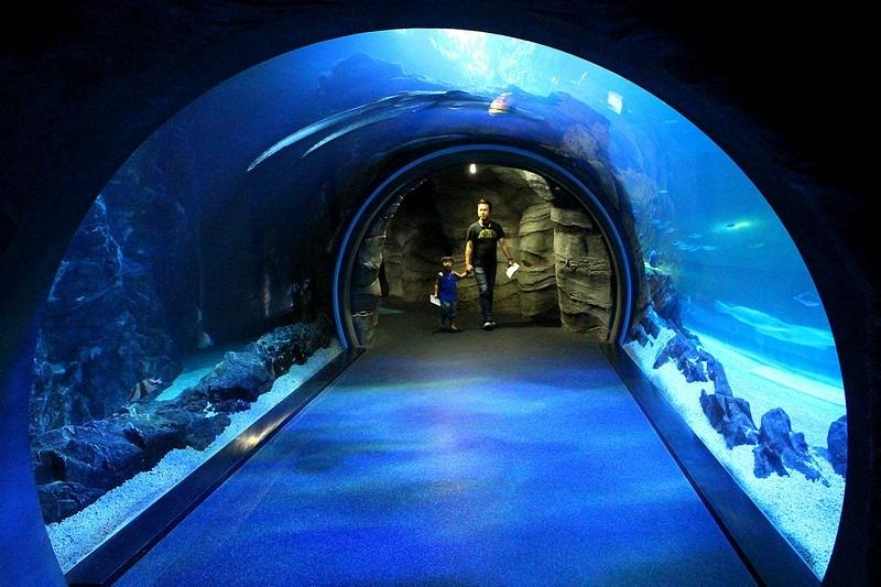 Aqua Planet Ilsan, Ilsan, Korea
