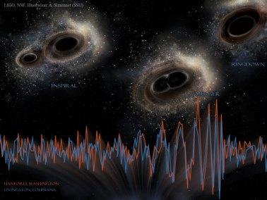 black holes and gravitational waves signals